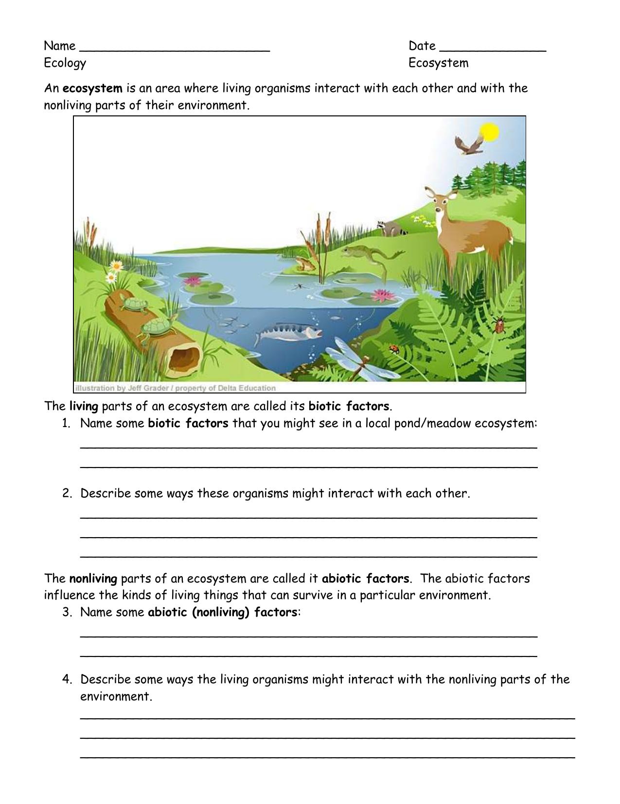 Worksheet Ecosystems Worksheets ecology student worksheets