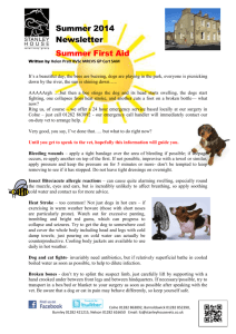 July & August Newsletter - SUMMER FIRST AID