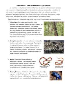 Adaptations Handout