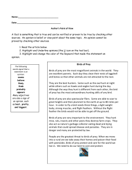 Authors Point of View Worksheet