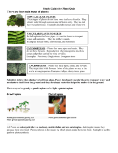 Study Guide for Plant Quiz There are four main types of plants