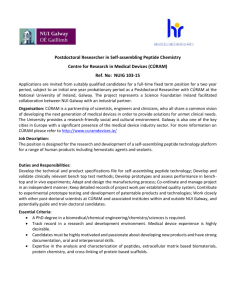 NUIG 103-15 Postdoctoral Researcher