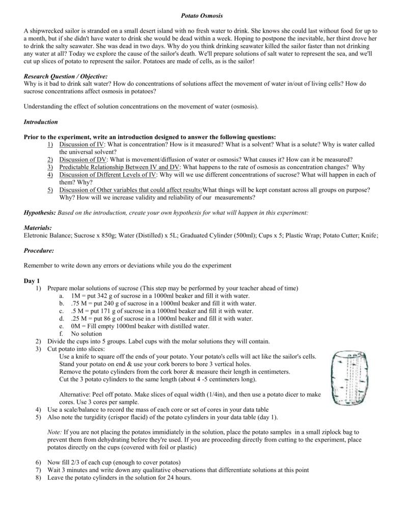 Testimonials custom essay writing service