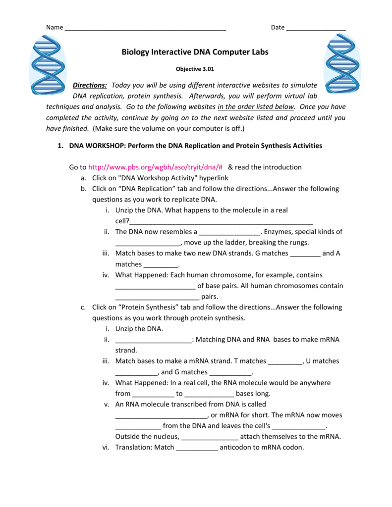 taco protein synthesis activity key