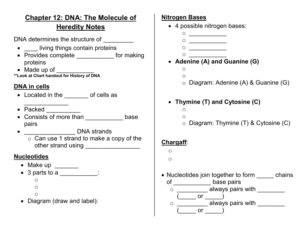 Plotting Ordered Pairs Worksheet double digit ision worksheets