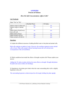 Salt Concentration Case Study