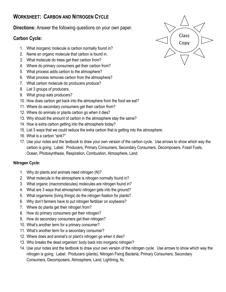 Worksheet Carbon and Nitrogen Cycle – Nitrogen Cycle Worksheet Answers