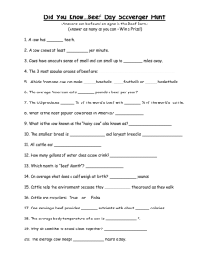 Scavenger Hunt Question Sheet