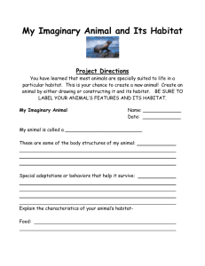 My Imaginary Animal and Its Habitat Project Directions