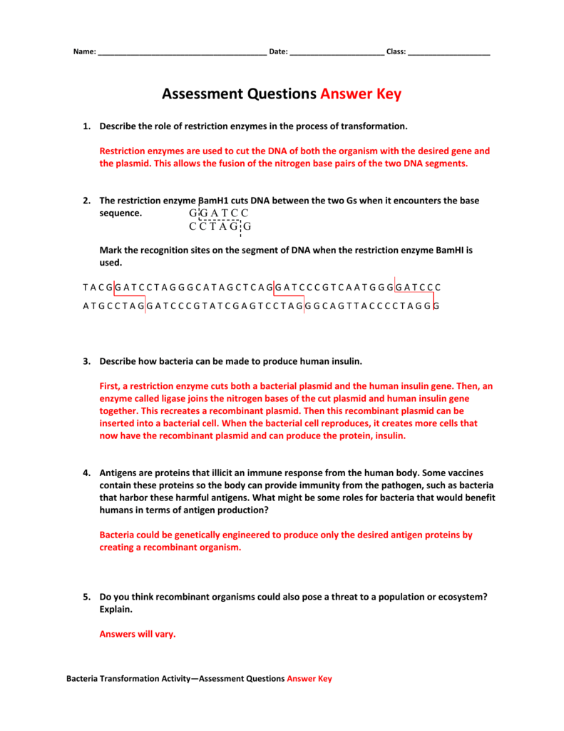Assessment Questions Answer Key