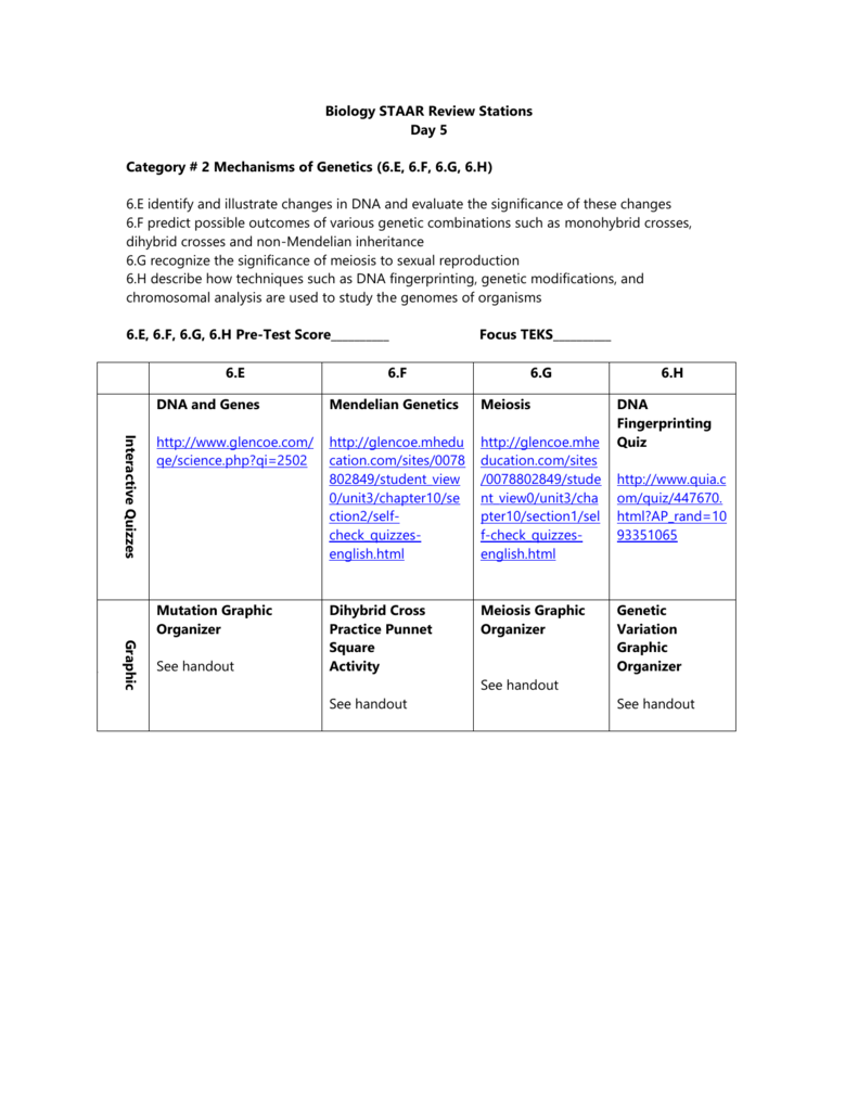 Bestseller: Chapter 10 Dihybrid Cross Worksheet Quizlet