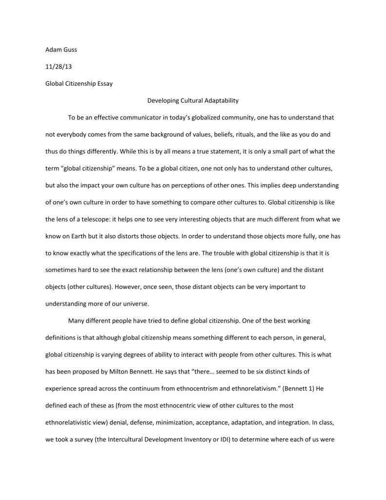 Global citizen essay