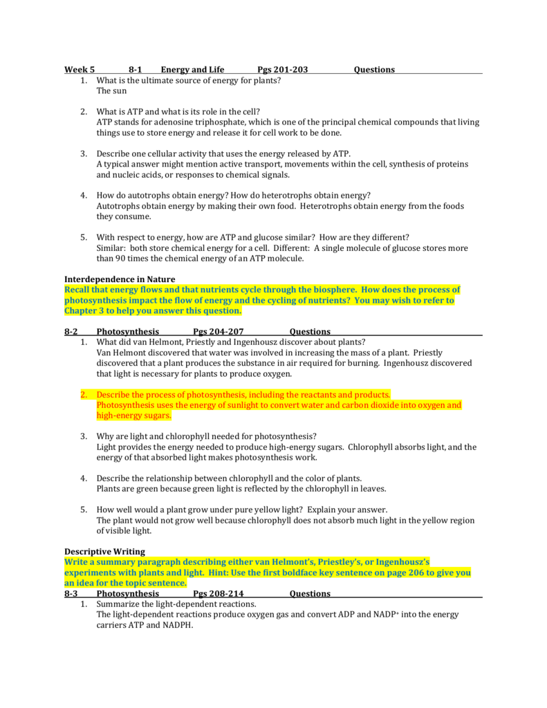 THE PHOTOSYNTHETIC PROCESS - linois. edu]