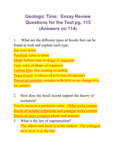 Geologic Time: Essay Review Questions for the Test pg. 115