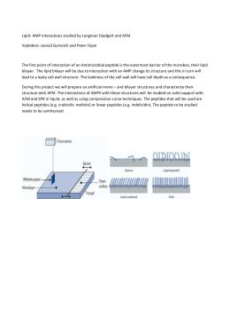 maschinen polytec rießelmann