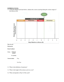 Estrous Worksheet