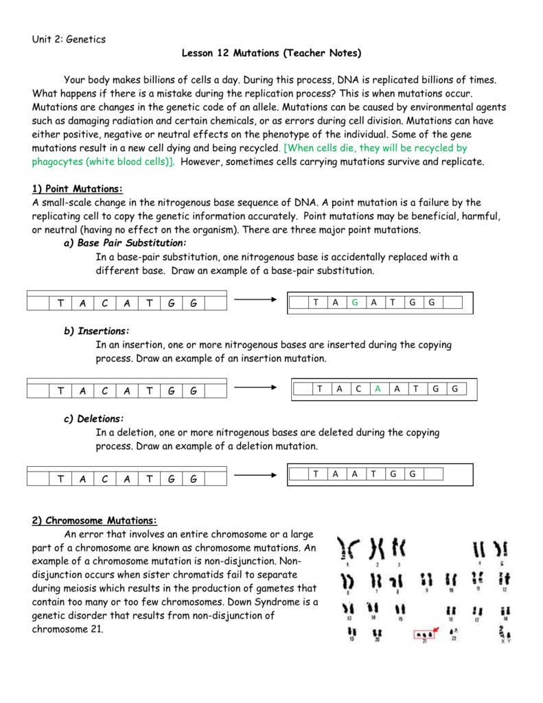 Lesson 12 Mutations