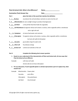 Plant and Animal Cell Assessment Answer Key