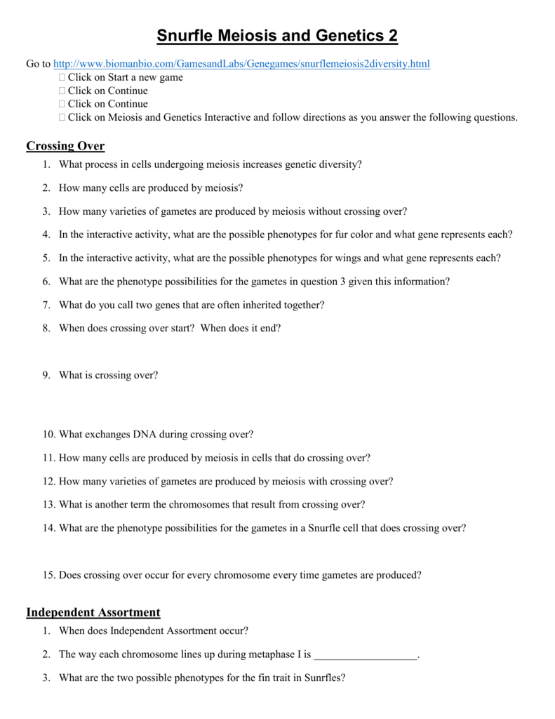 Snurfle Meiosis and Genetics 2 Worksheet