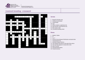 Livestock breeding - crossword