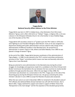 Tsegay Berhe National Security Affairs Advisor to the Prime Minister