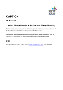 CAPTION 24 th April 2014 Nettex Sheep Livestock