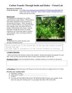 Carbon Transfer Through Snails and Elodea * Virtual Lab