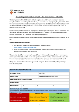 Somers town risk assessment july 2014.