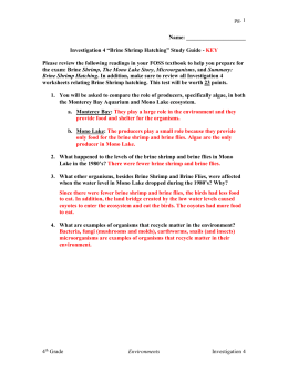 "pg. Name: Investigation 4 ""Brine Shrimp Hatching"" Study Guide"