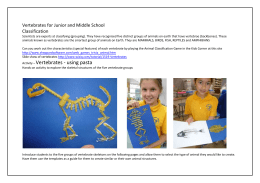 Explore Vertebrates using Pasta