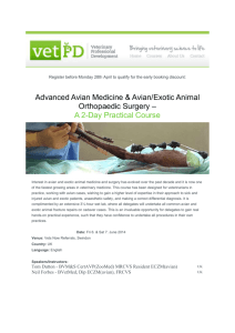Interest in avian and exotic animal medicine and surgery has
