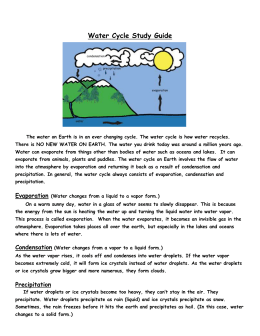 Water Cycle Study Guide