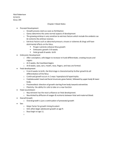 Nick Robertson 9/13/15 Kines 199 Chapter 4 Book Notes Prenatal