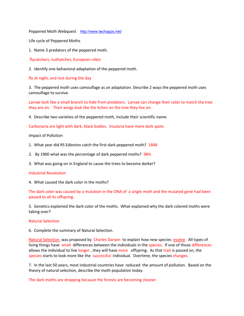 Worksheet Peppered Moth Simulation Worksheet Worksheet