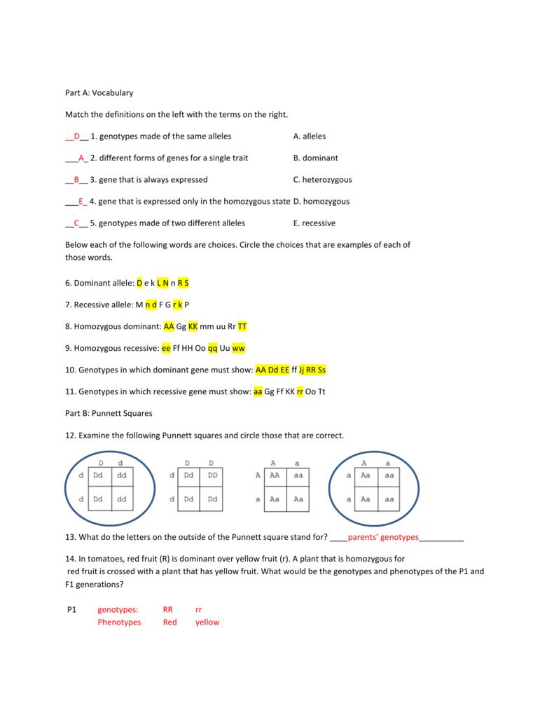 100+ [ Worksheet Dihybrid Crosses Unit 3 Genetics Answers ] | Z ...