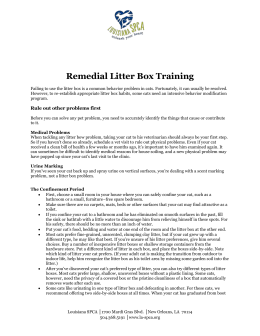 Remedial Litter Box Training