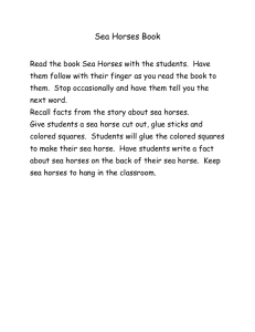 Sea Horse Book - Volusia County Schools