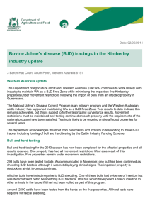 (BJD) tracings in the Kimberley industry update