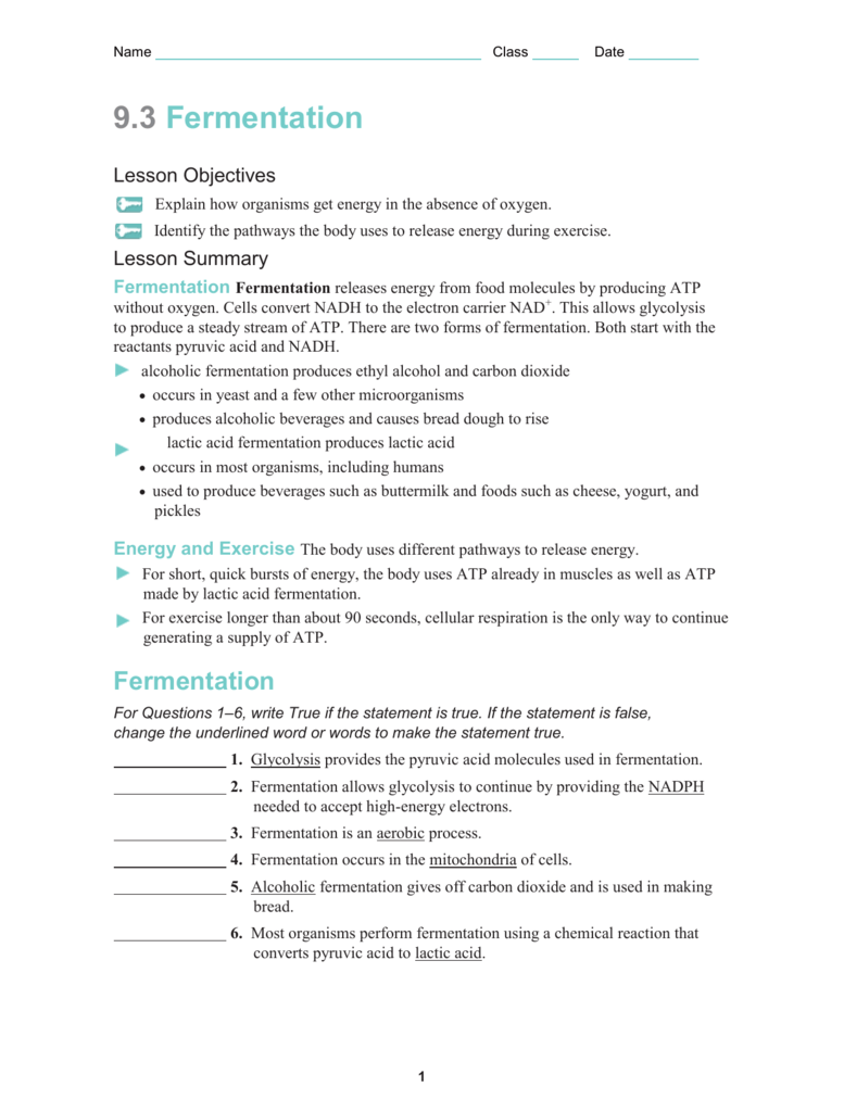 All Grade Worksheets Cell Energy Worksheet All Grade – Fermentation Worksheet