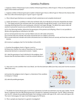 genetics problems worksheet answers