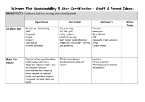 Winters Flat Sustainability – Staff and Parents ideas