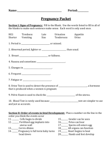 Pregnancy Packet