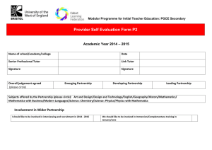 Provider Self-Evaluation form