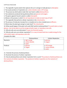 cell process study guide answers