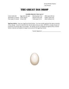 The Great Egg Drop - Blank Worksheet