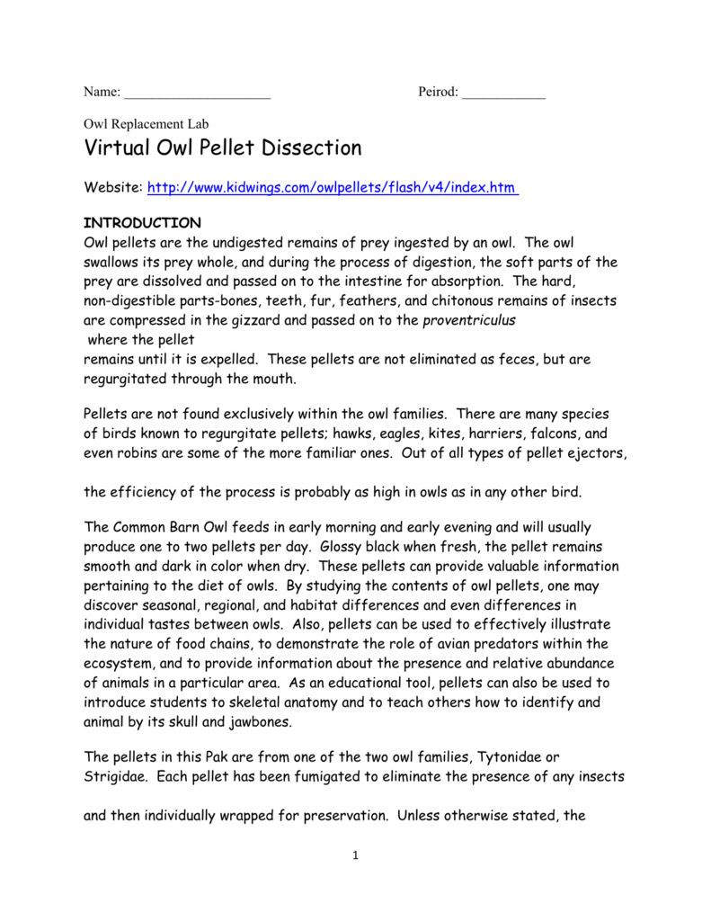 worksheet Virtual Owl Pellet Dissection Worksheet owl replacement lab