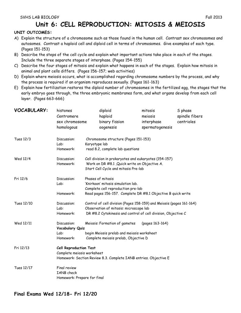 Unit 8 Direction Sheet Sonoma Valley High School
