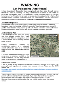 Warning leaflet - Acle Parish Council