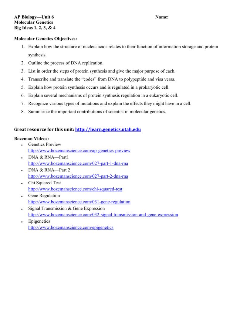 AP Biology Unit 6 Name Molecular Genetics Big Ideas 1 2 3 4 – From Dna to Protein Worksheet