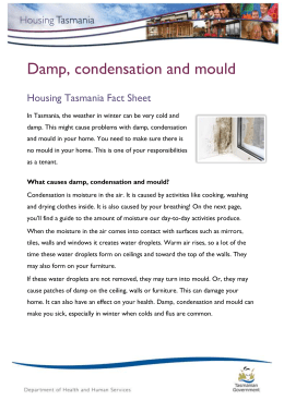 Damp, Condensation and Mould - Plain English